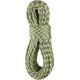 Edelrid Cobra Rope 10,3mm 60m oasis-snow